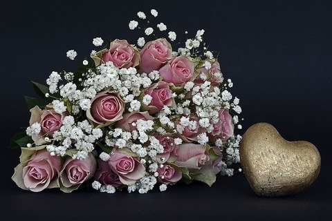 roses-1420718_640