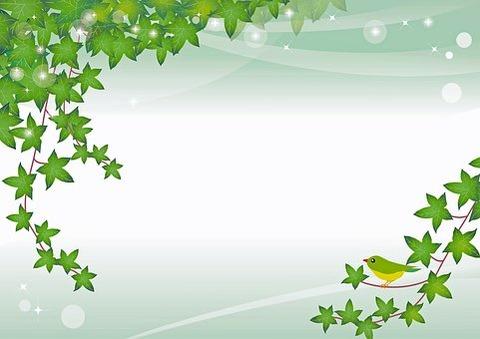 spring-leaf-background-4035408__340