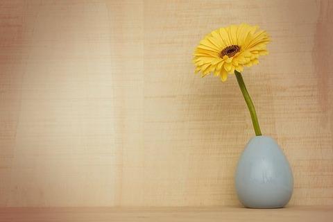 gerbera-flower-3186015__340