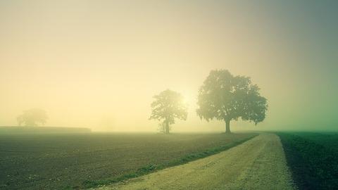 dawn-3804124__340