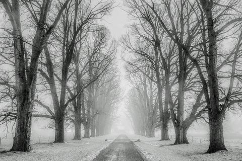 winter-1890653_640
