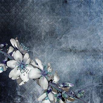 texture-2057558__340