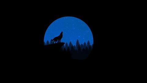 wolf-2309829__340