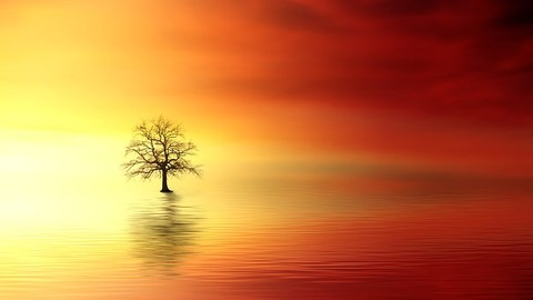 sunset-3156440__340