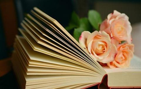 book-1769228_640