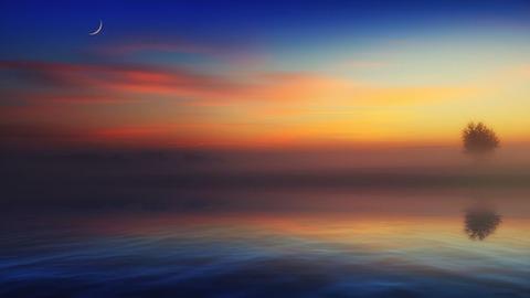 fog-4412948__340