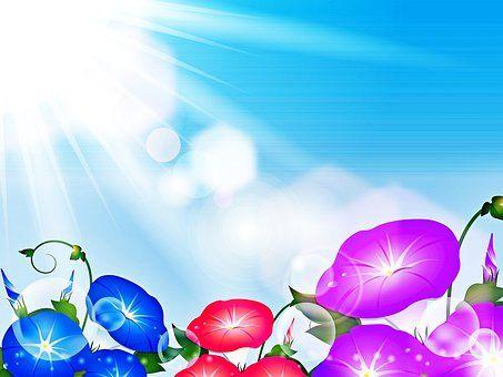 flower-background-4268935__340