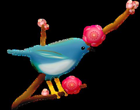 blue-bird-4299921_640