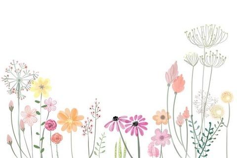 flower-2336287_640