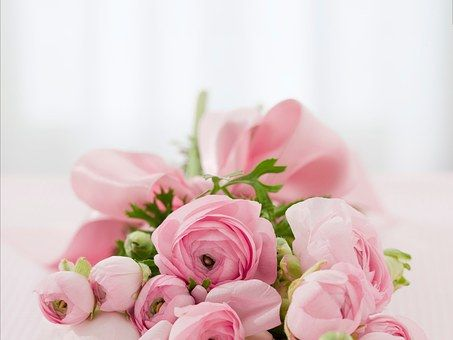 roses-142876__340
