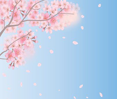 spring-background-4035402__340