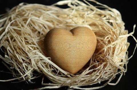 wood-wool-1186917__340