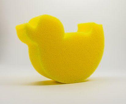 sponge-4436980__340