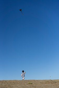 kite-1447813__340